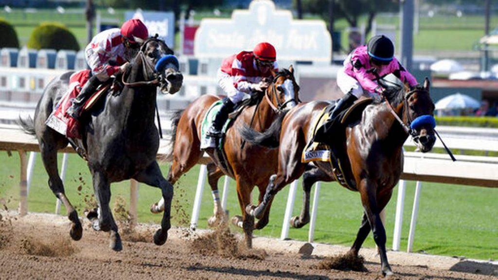 Horse racinng photo